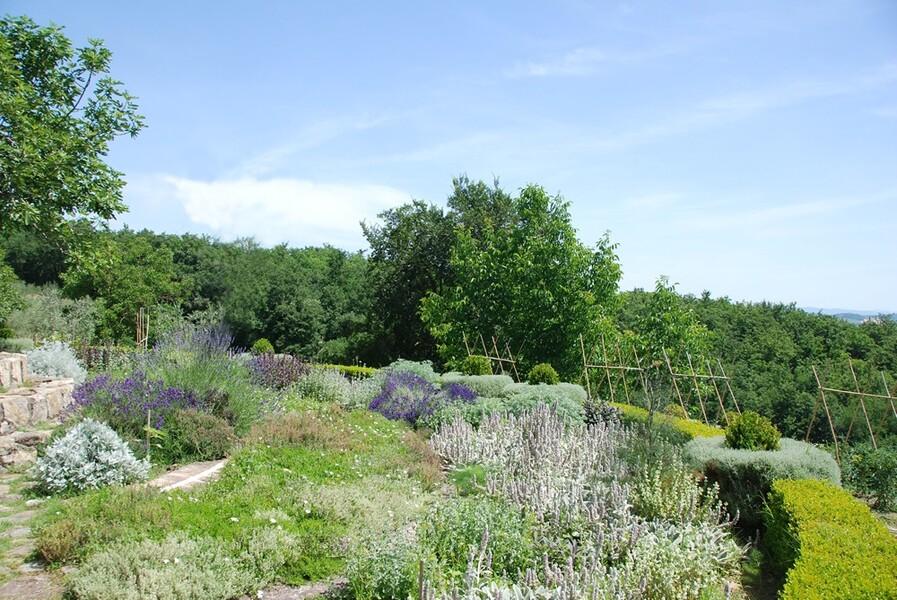 Ein Kräutergarten steht allen Gästen der Villa Le Porciglia zur freien Nutzung zur Verfügung