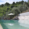 Private pool in a holiday villa in Lucca with olive trees
