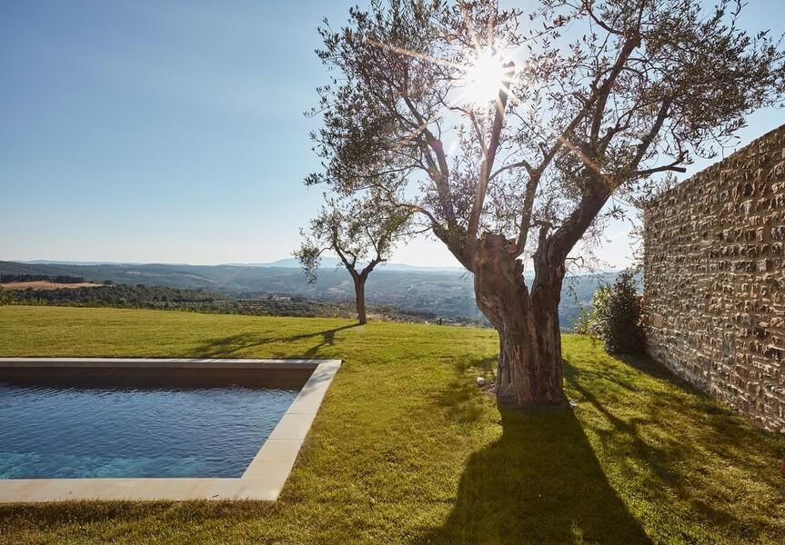 Pool zur Alleinnutzung mit Olivenbaum und Blick über die Hügel in Mittelitalien