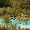 Privater Pool inmitten eines Olivenhains in der Toskana im Ferienhaus Damiano