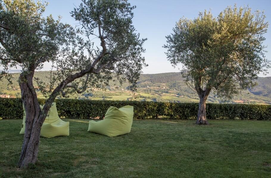 Garten mit Olivenbäumen im Ferienhaus Arco in Italien