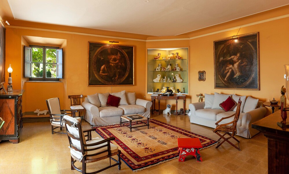 Villa imperatore 010  Salotto cani villa.jpeg