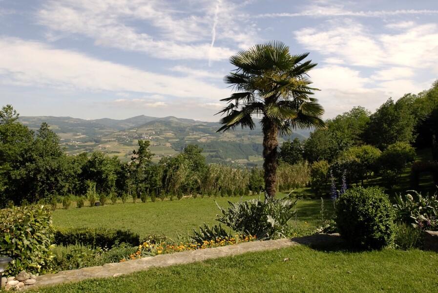 Garten mit Palme im Ferienhaus im Piemeont Cascina delle Langhe